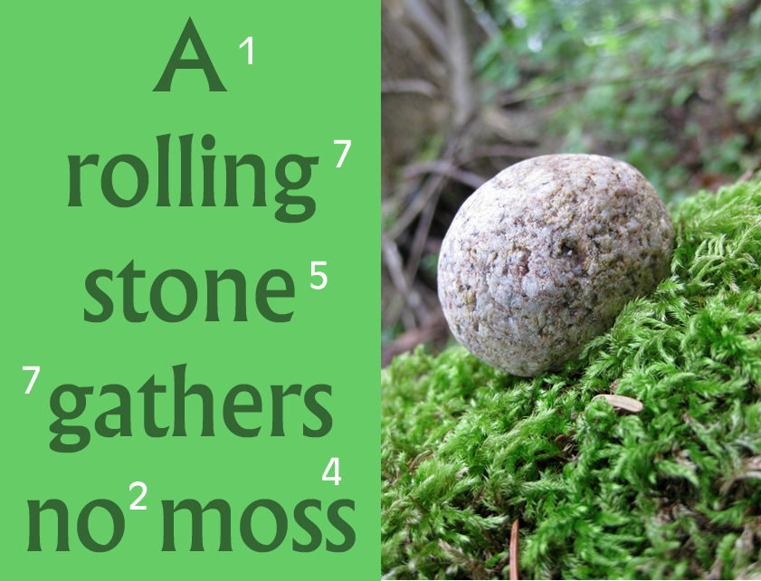essay a rolling stone gathers no moss